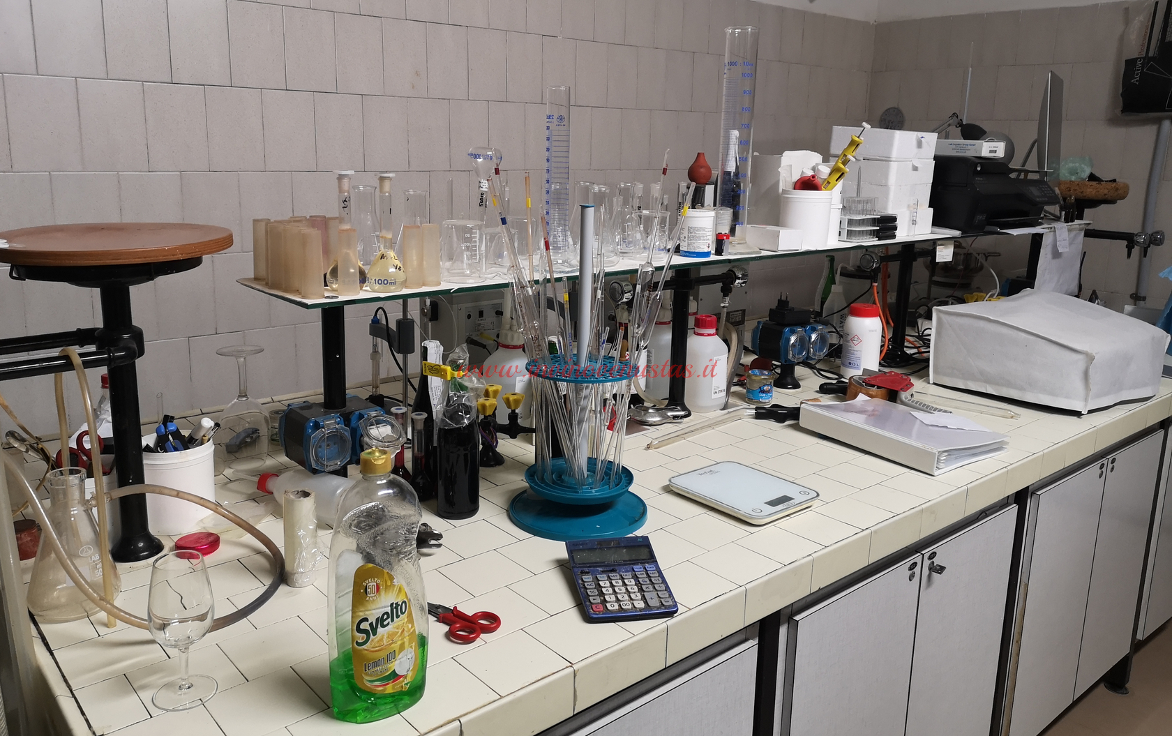 Laboratorio cantina Enio Ottaviani San Clemente Rimini