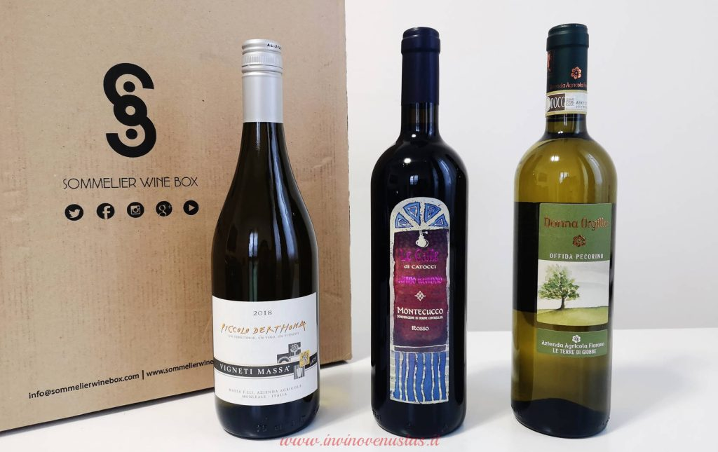 Bottiglie Sommelier Wine Box tappa #19
