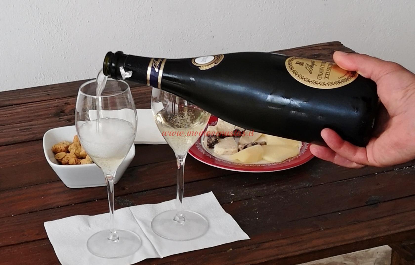 Wine tasting D'Araprì San Severo