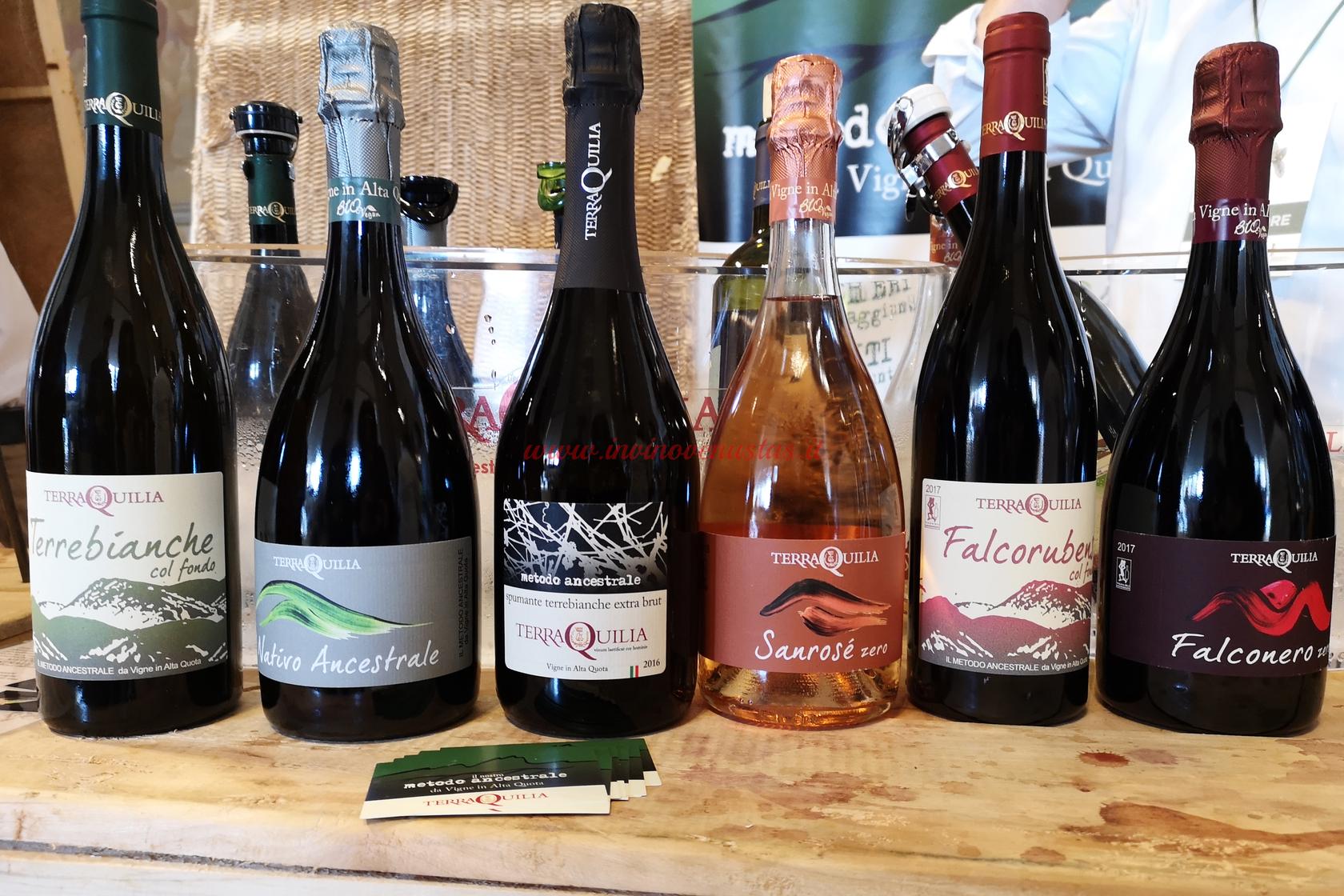 Vini Terraquilia degustazione Enologica 2019