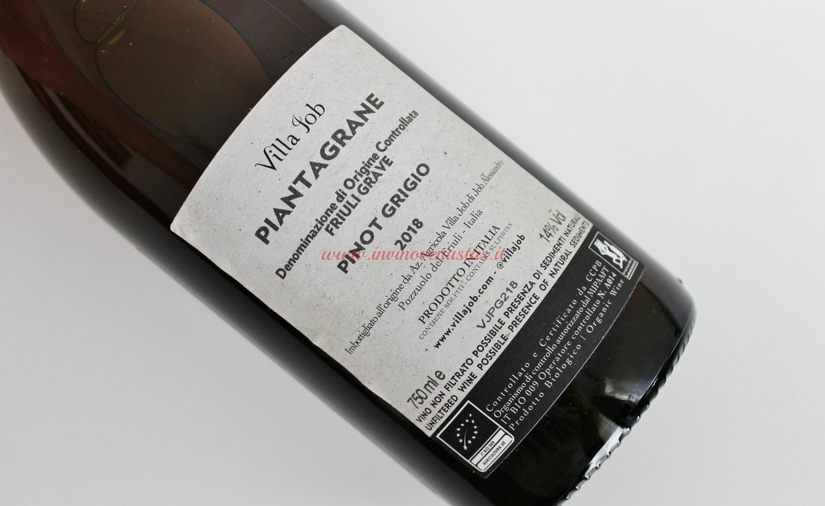 Retro etichetta Pinot Grigio Piantagrane Villa Job 2018