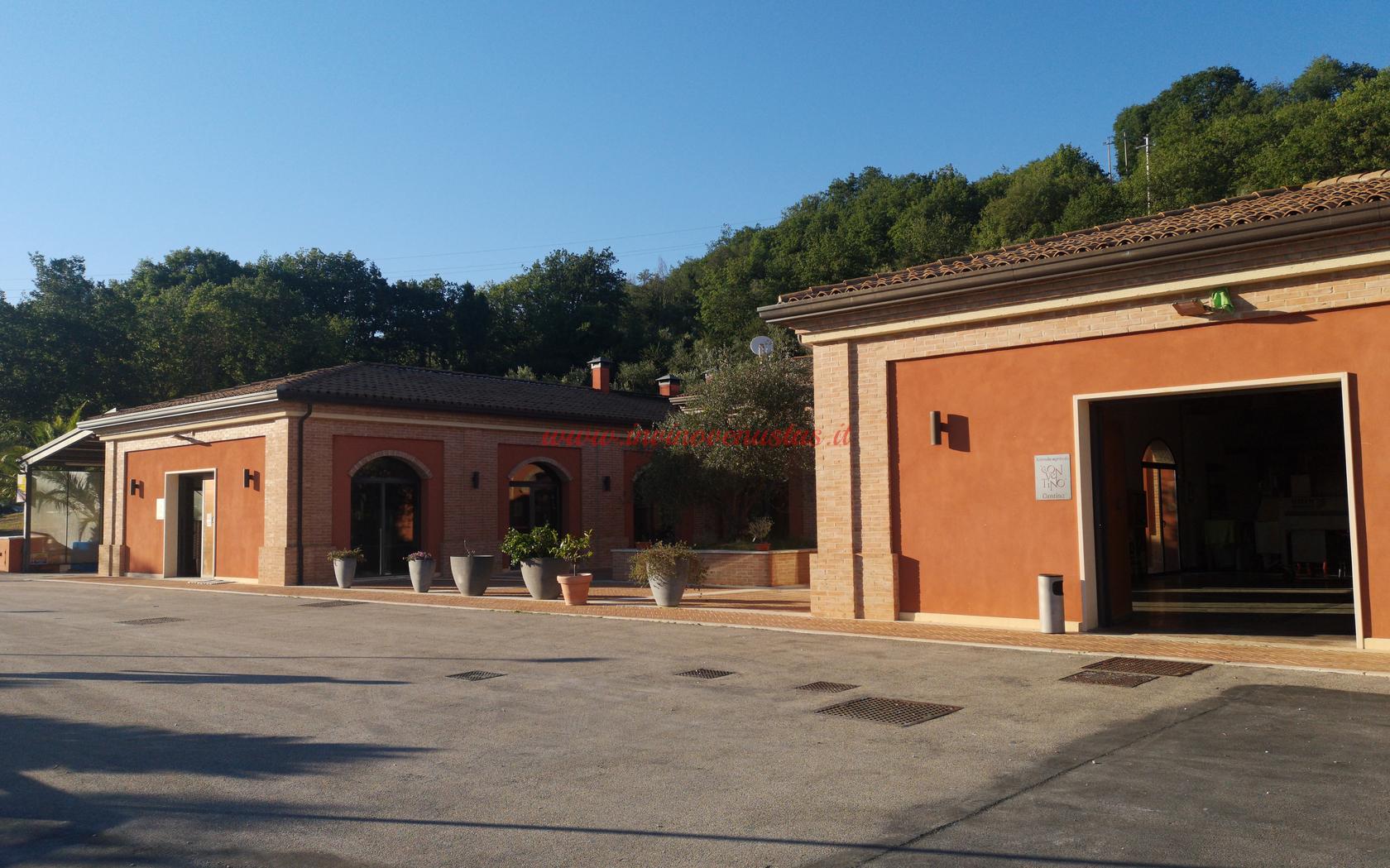 Azienda Conventino Monteciccardo