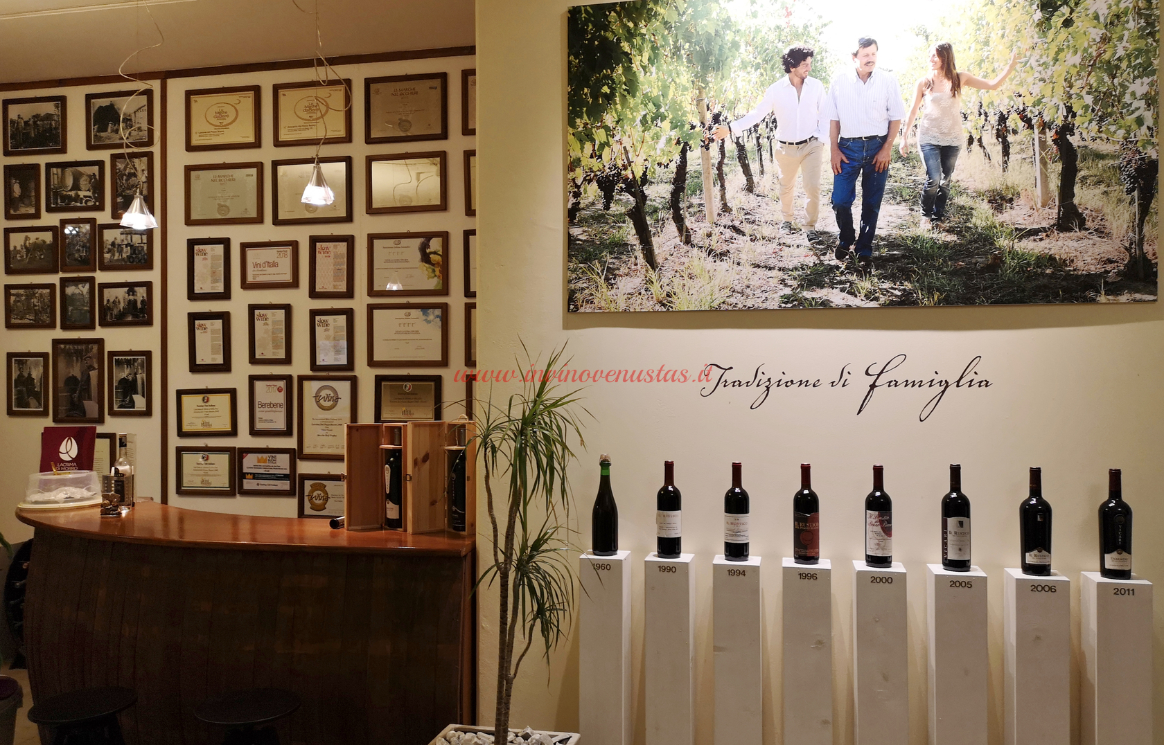 Wine Shop Azienda Agricola Vicari Morro d'Alba