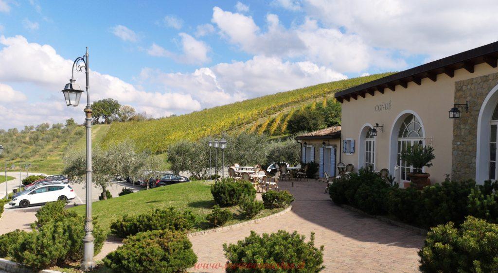 Borgo Condé Wine Resort Forlì ristorante Il Sangiovese e vista vigneti