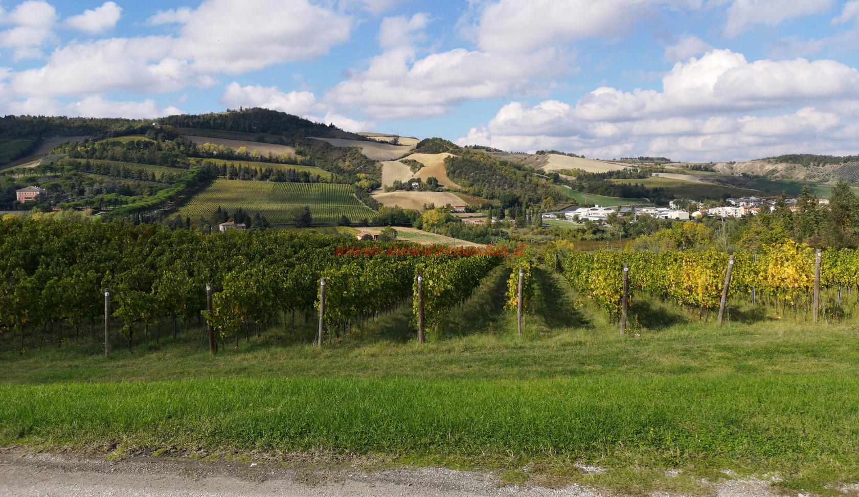 Colline vista Wine Resort Borgo Condé Forlì