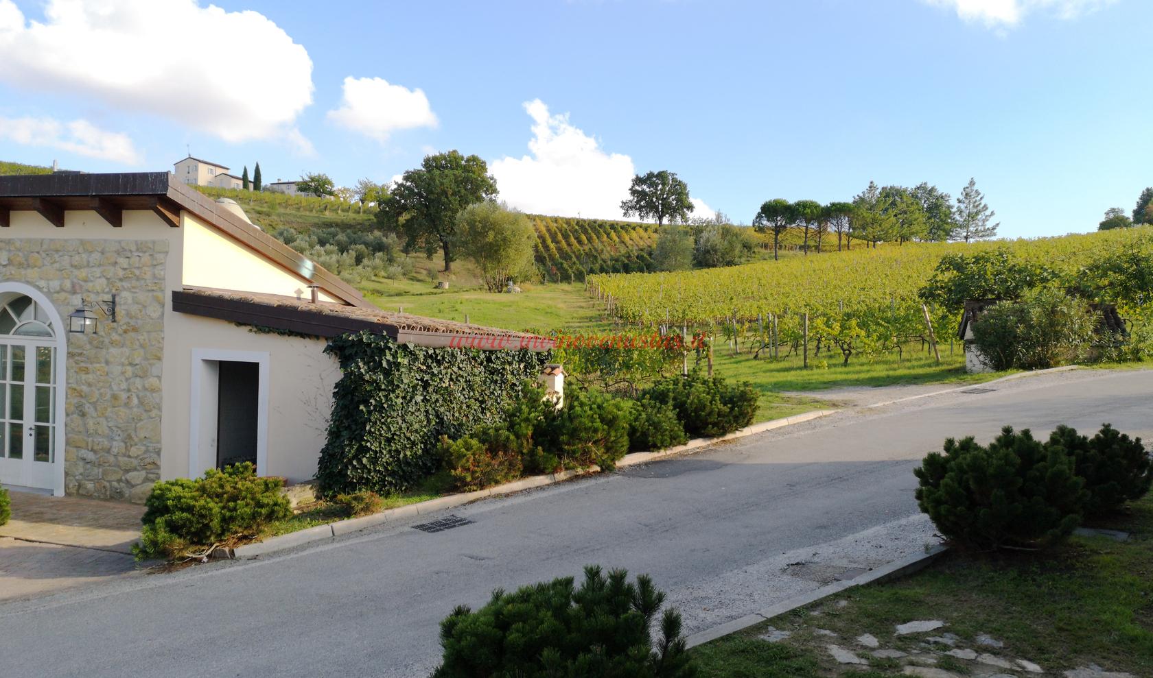 Wine Resort Borgo Condé Forlì