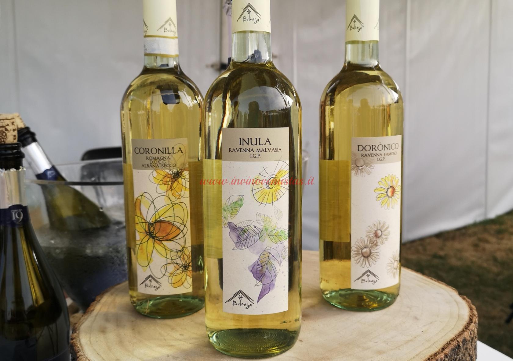 Cantina Bulzaga vini bianchi Only Wine 2021
