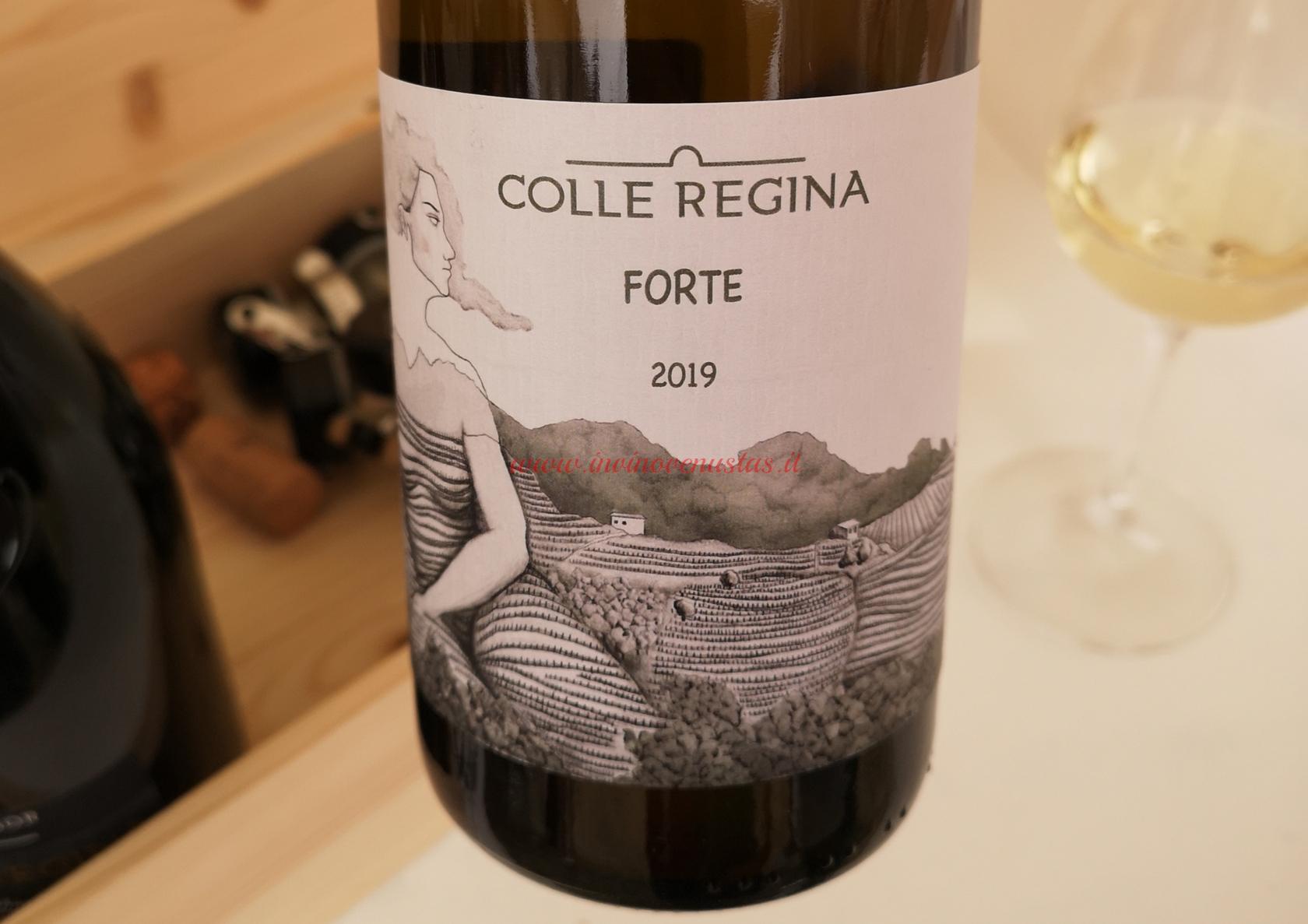 Forte 2019 Colle Regina da Solaris, vitigno PIWI