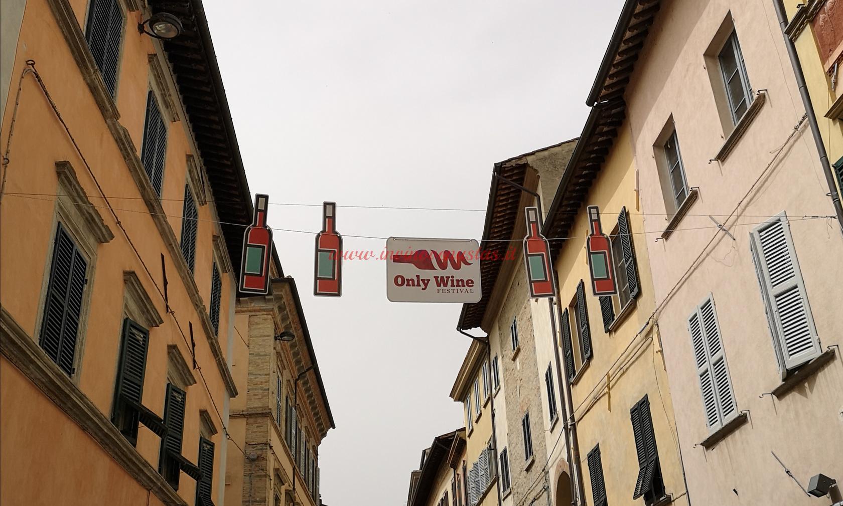 Only Wine Città di Castello