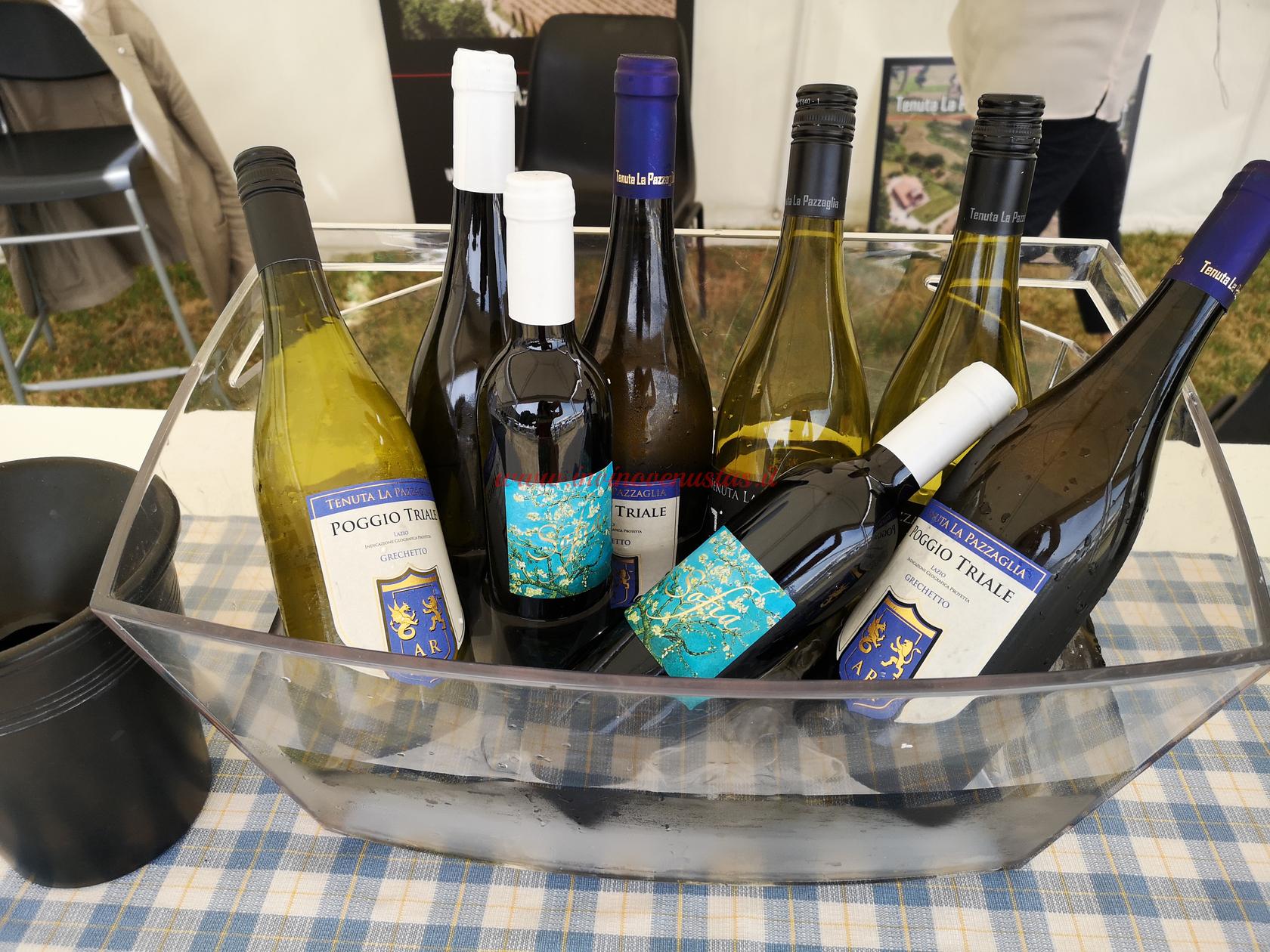 Vini Tenuta La Pazzaglia Only Wine 2021