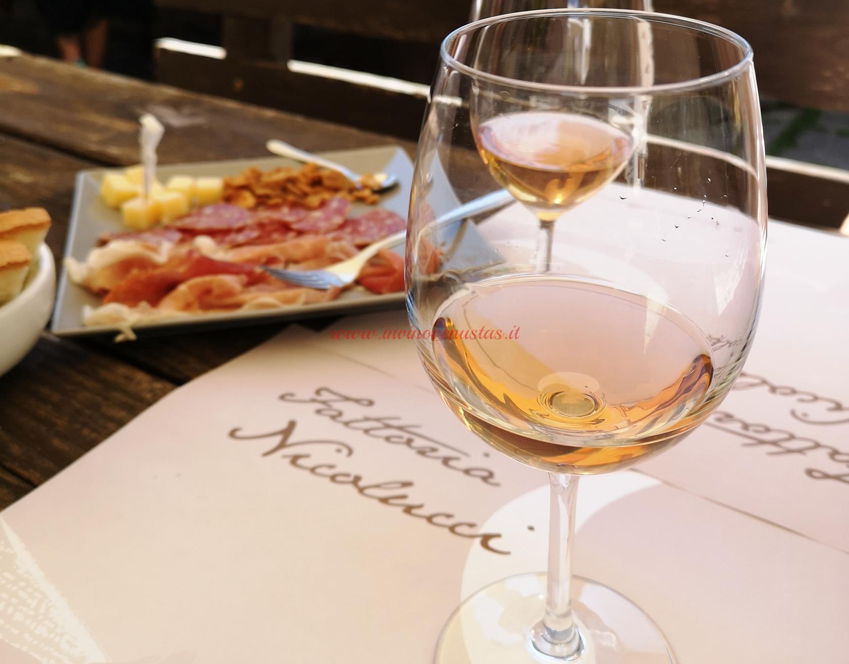 Degustazione vini Nicolucci Cantine Aperte 2021